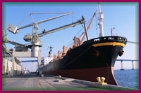 import_financing
